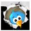 Les Vieilles Charrues sur les médias sociaux Icone_twitter
